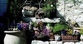 Een lentetuin in een paar stappen!
