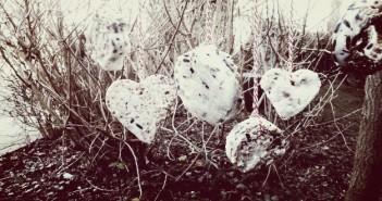 DiY: mezenbollen maken